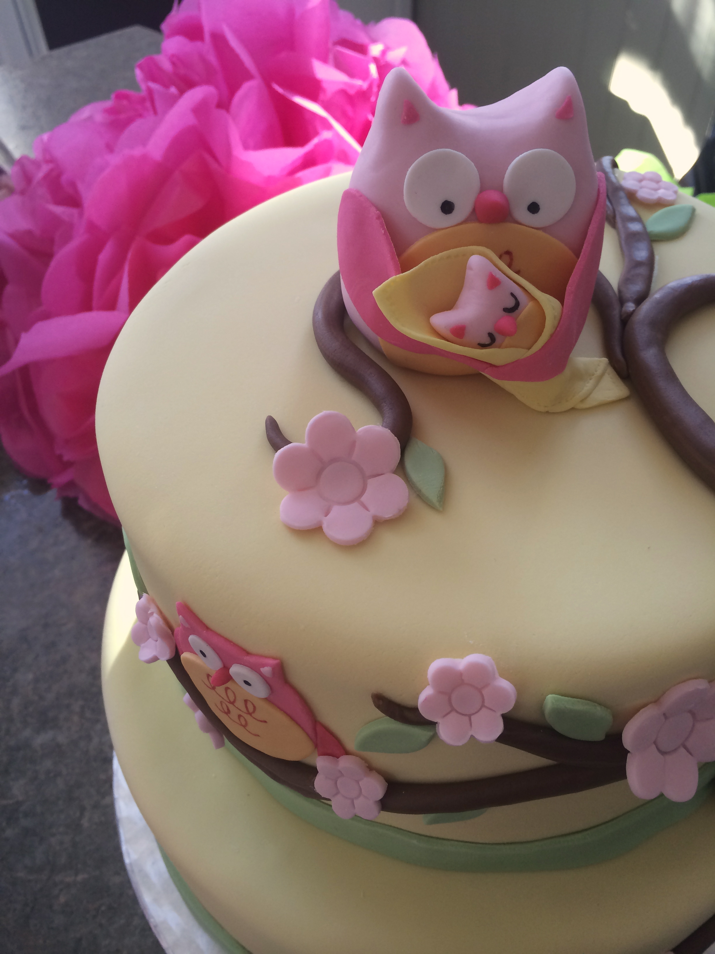 owl baby shower cake cakes by caralin