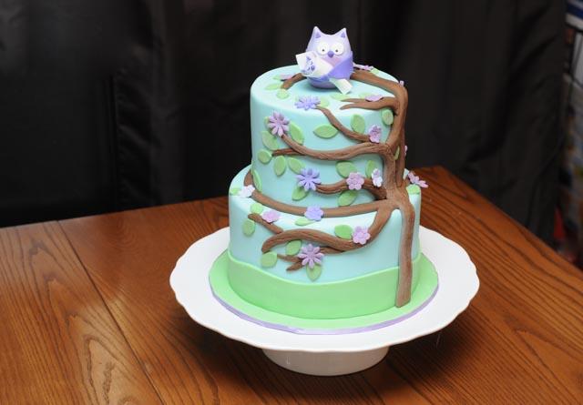 Purple Owl Baby Shower Cake